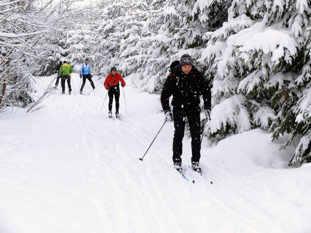 Na snímke bežecko - lyžiarska stopa Beskydsko - Javorníckej magistrály.