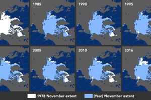 Zmena v rozsahu arktického ľadu v mesiaci november od roku 1978 do roku 2016.