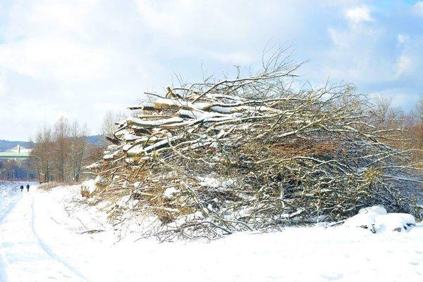 Pre výstavbu trate padlo už veľa stromov.