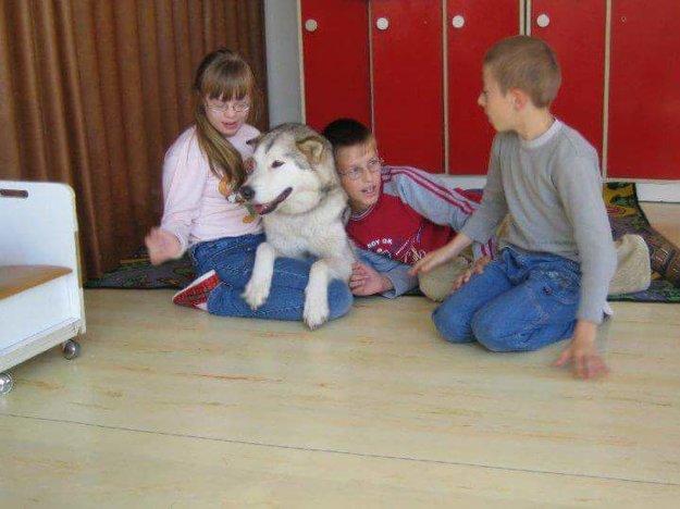 Psíkovia pomáhajú v rámci rôznych terapií aj deťom.