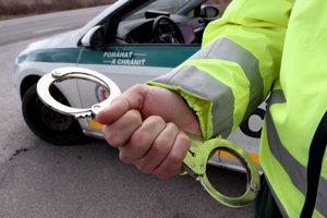 Polícia mala vlani v okrese Prievidza menej práce ako rok predtým.