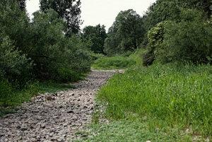 Koryto Dunaja pri Immendingene býva v lete úplne bez vody.