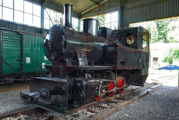 Dlhoročným snom múzejníkov je obnova železničnej trate, hoci na novom mieste.