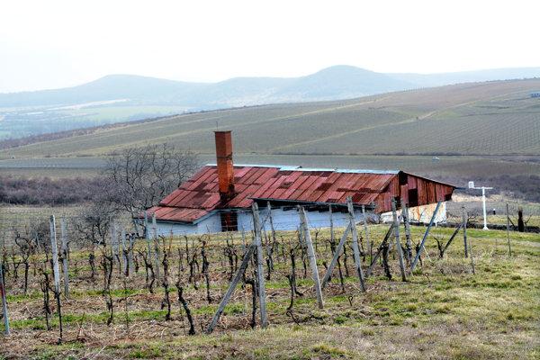 Vinice široko ďaleko. Kam len oko dovidí, na všetkých stráňach bude čoskoro pučať vínna réva.