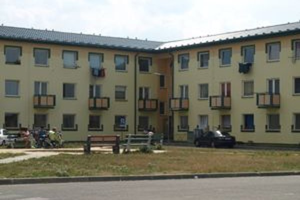 Šváby a rusi sa objavili  v bytoch na Ciglianskej ceste.
