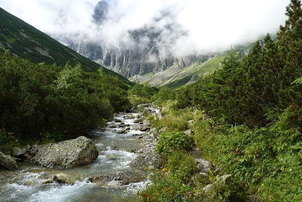 Chodník v Javorovej doline je opäť priechodný.