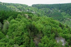 Lesy a skalky v okolí Zlej diery.