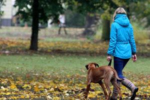 Pes s majiteľom.