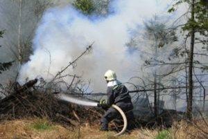 Hasiči z Kysúc momentálne likvidujú rozsiahly požiar rúbaniska.