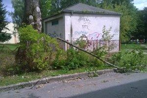 Ťažké spadnuté konáre takto poškodili oplotenie školy.