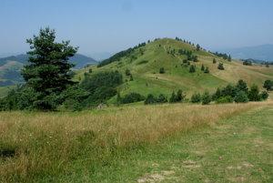 Wysoki Wierch (Šlachovky) z hraničného hrebeňa.