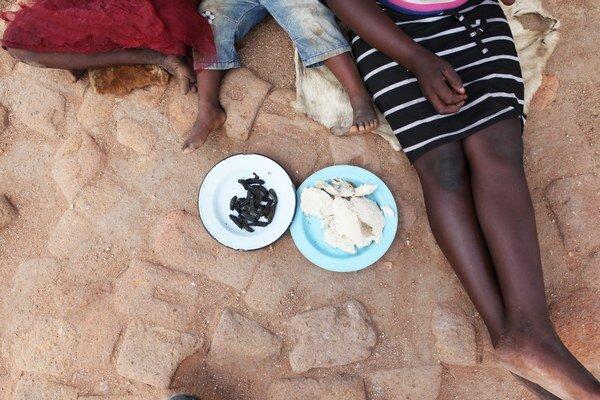 Až 2,2 milióna obyvateľov Zimbabwe každý deň bojuje s hladom.