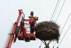 Ornitológ Milan Olekšák sa khniezdam dostal vďaka pracovníkom Stredoslovenskej energetiky – distribúcie.