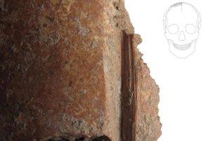 Fragment ľudskej lebky so zárezmi.