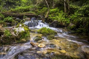 Voda v časti rieky Belá, ktorá tečie v rezervácii, je výnimočne čistá a nezhnedne ani počas povodne.