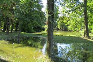 Voda zaliala trávniky. Vzadu je Malá Hangócka.