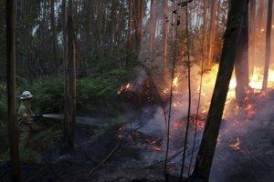 Hasiči upozorňujú, že aj z malého ohňa môže vzniknúť rozsiahly požiar.