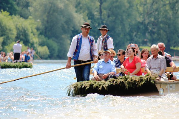 Pltníci na Dunajci