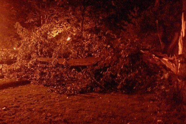 Víchrica polámala stovky stromov.