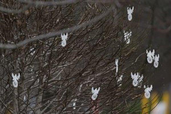 Anjelici zdobia stromy pred kostolom v Newtowne.