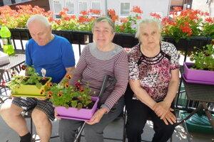Seniorom sa podarilo vypestovať nádherné kvietky.