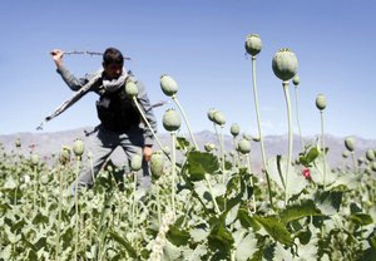 Narkobarón financoval Taliban, dostal doživotie - svet.sme.sk