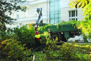 Výrub stromov sa verejnosti Turčianskych Teplíc nepáči.