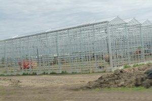 V skleníkoch bude práca hlavne v čase sezónnneho zberu.