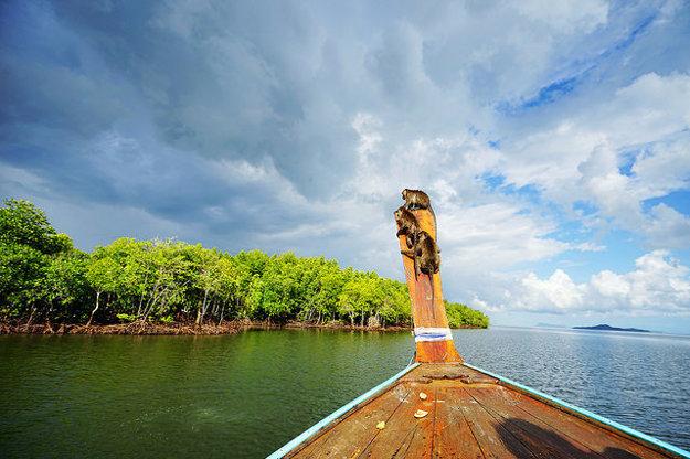 Výletné plavby sú v Krabi ľahko dostupné.