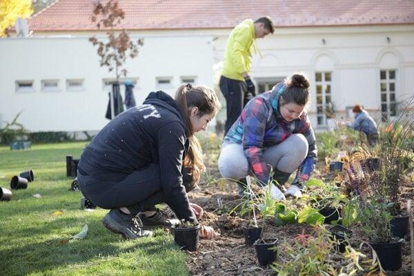Študenti skrášľujú prostredie okolo Biskupského hostinca.