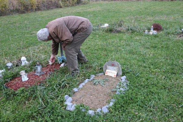 Cintorín pre zvieratá. Od roku 2013 funguje vRakovci nad Ondavou.