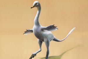 Halszkaraptor escuilliei. Nepodobá sa však na nič, čo sme si doteraz s pojmom dinosaurus spájali.