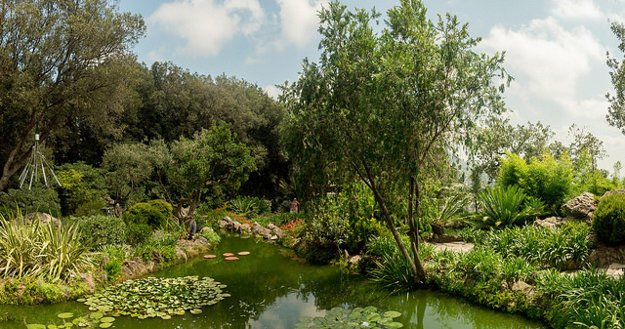 Ischia: Botanická záhrada.