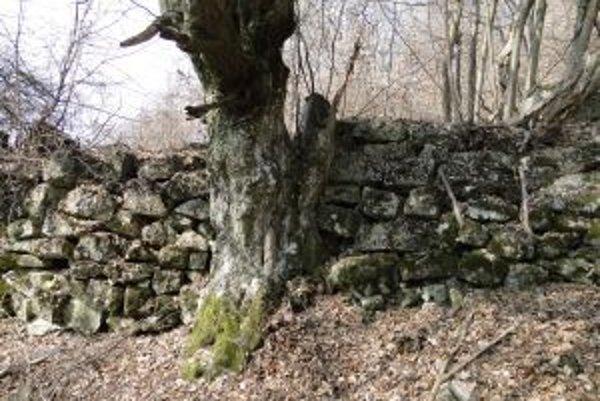 Ostali pri Priechode pozostatky hradiska?