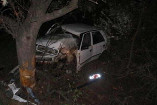 Auto zastavil až strom.