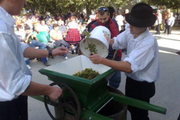 Návštevnici videli ukážky mletia a prešovania hrozna a majstrovstvo vinohradníkov si mohli sami odskúšať.