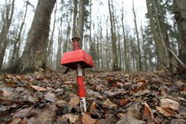 V lese nad Detvou na zlato upozorňujú len kliny po geologických vrtoch.