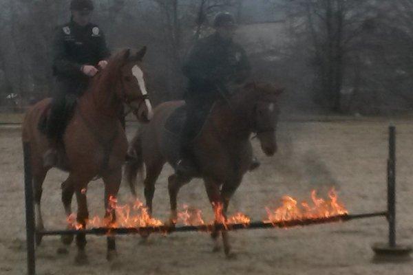 Kone zvládali aj takéto prekážky.