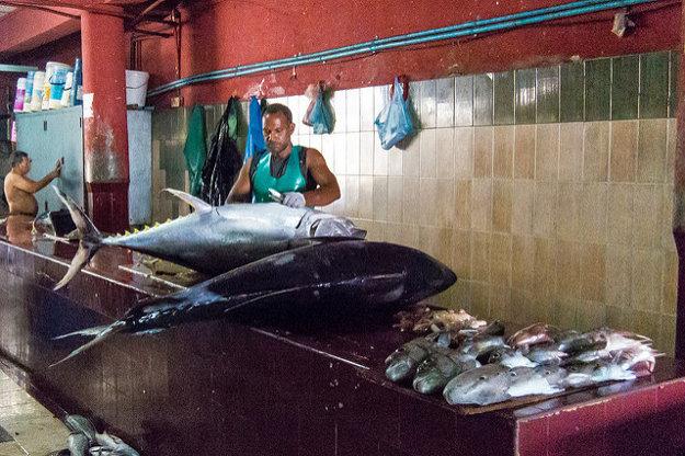 Rybí trh v hlavnom meste Male
