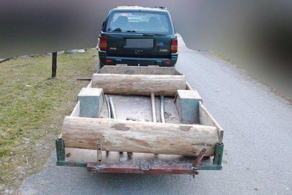 Vodič viezol na vozíku drevo aj deti.