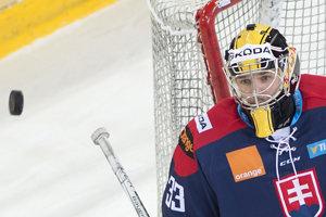 V bráne slovenského tímu stojí Denis Godla. Ilustračná fotografia.