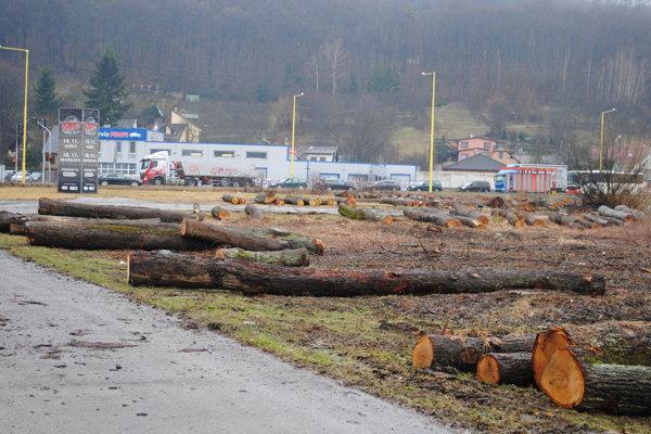 Vyrúbané stromy. Sú posledné dni na viacerých miestach.
