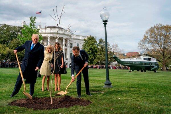 Trump s Macronom pri sadení stromu.