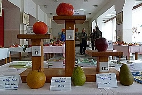 Víťazné jablká a hrušky.