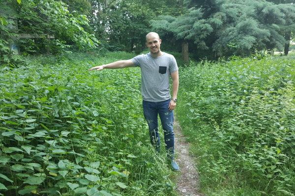 Šéf majetkovej komisie Michal Cimmermann ukazuje, kam až nechala cirkev narásť burinu vo svojom parku.