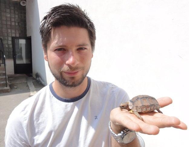 Táto korytnačka je vôbec prvou odchovanou vo Viváriu SPU. Jej pohlavie budú poznať o štyri roky. Zatiaľ dostala pracovný názov Donatello.