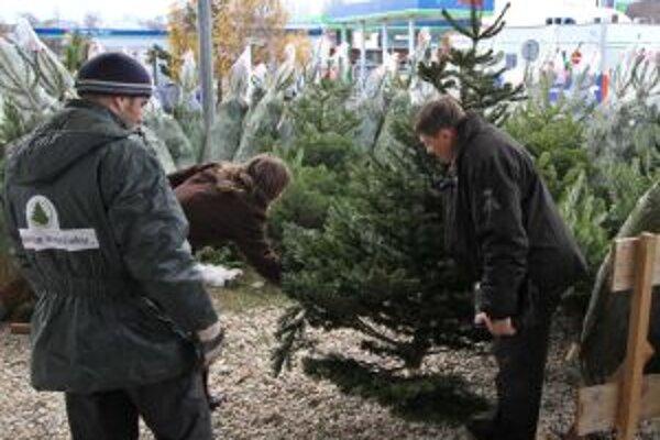Aj za stromčeky si tento rok priplatíme.