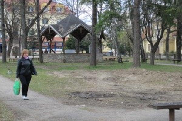 S prácami začali v parku vyrúbaním chorých a suchých stromov.