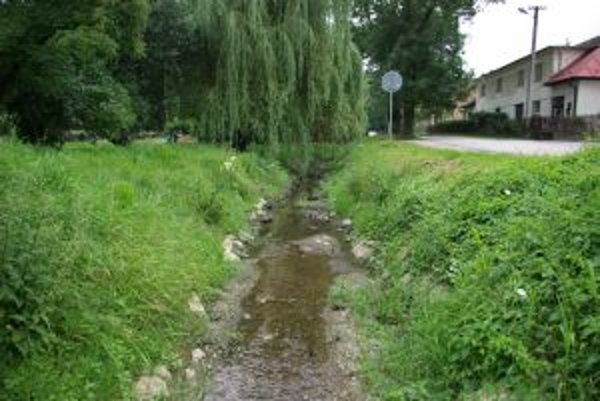 Všivák zostane potokom. Park na Bôríku by o svoju dominantu prísť nemal.