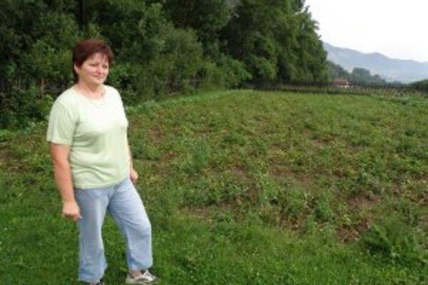 Dana Mravcová ukazuje na pole so zemiakmi, ktoré jej zničili diviaky.